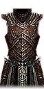 diablo-3-objects-pestilence-robe_g-icon